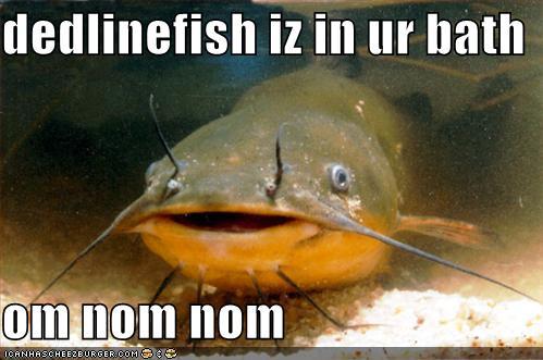 deadlinefish