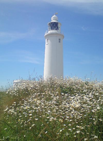 Picnic spot: lighthouse at Hurst Castle